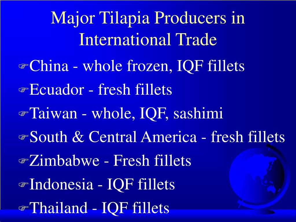 Major Tilapia Producers in International Trade