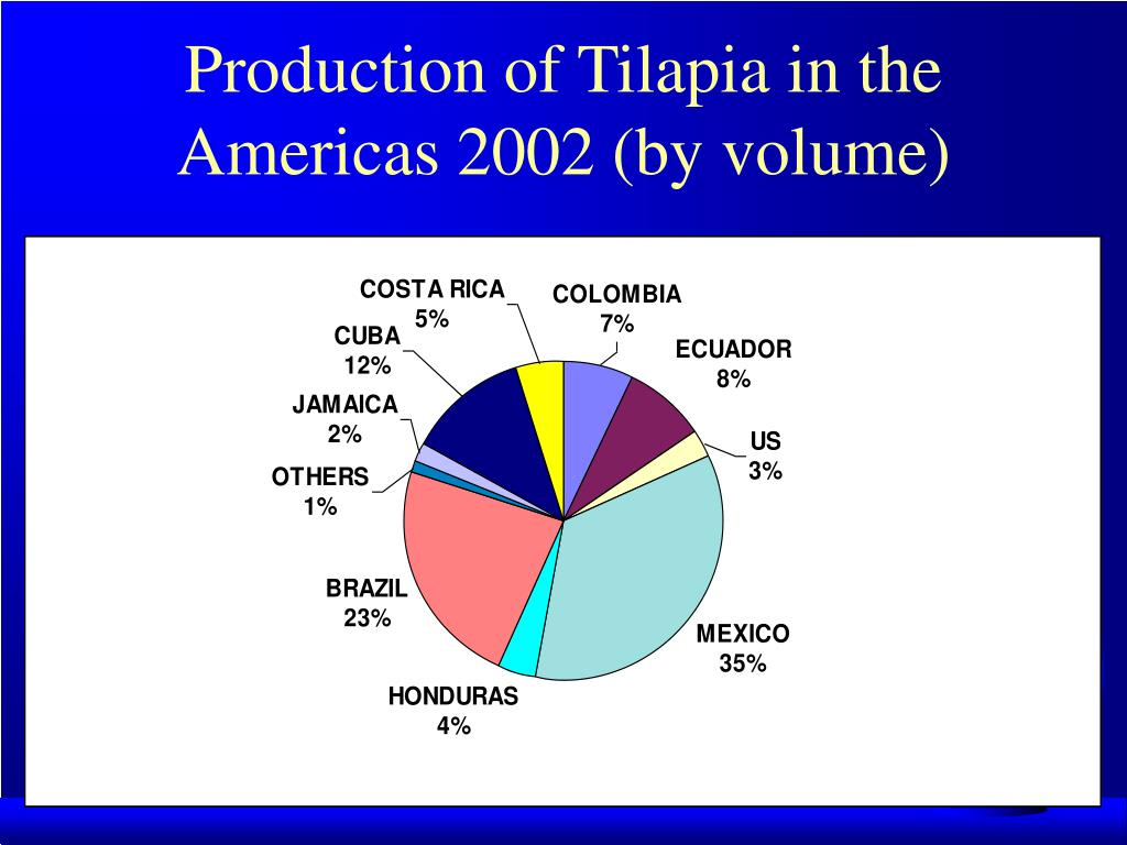 Production of Tilapia in the Americas 2002 (by volume)