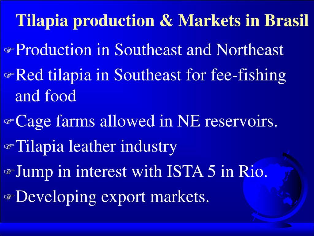 Tilapia production & Markets in Brasil