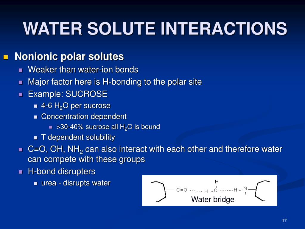 WATER SOLUTE INTERACTIONS