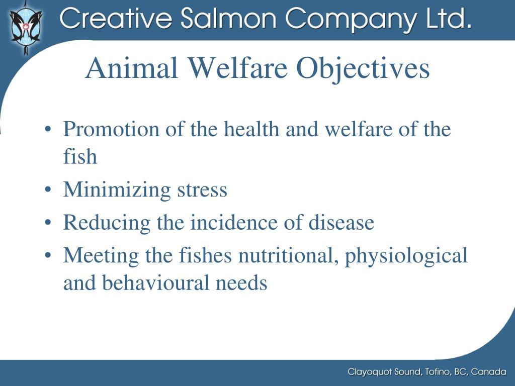 Animal Welfare Objectives