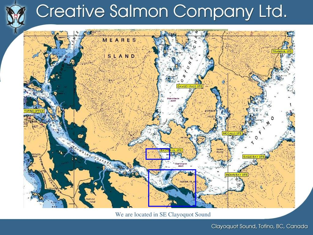 We are located in SE Clayoquot Sound