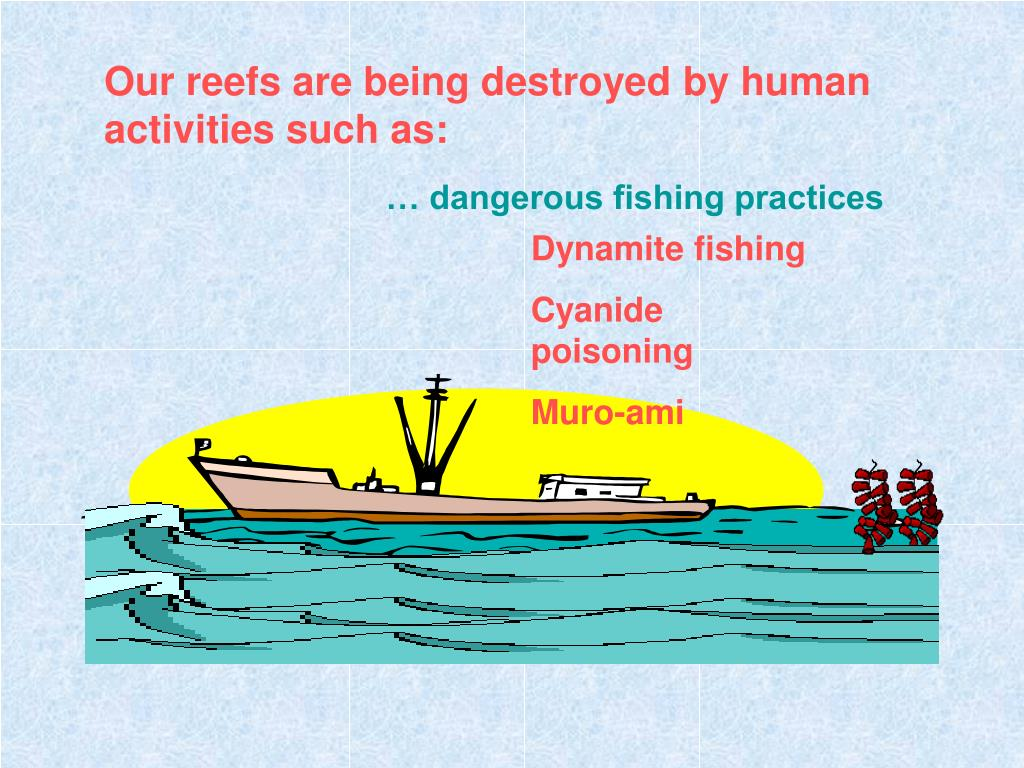 Our reefs are being destroyed by human activities such as: