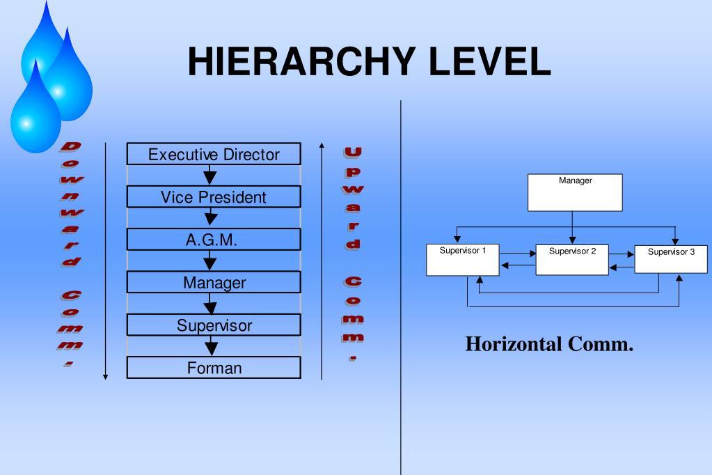 HIERARCHY LEVEL