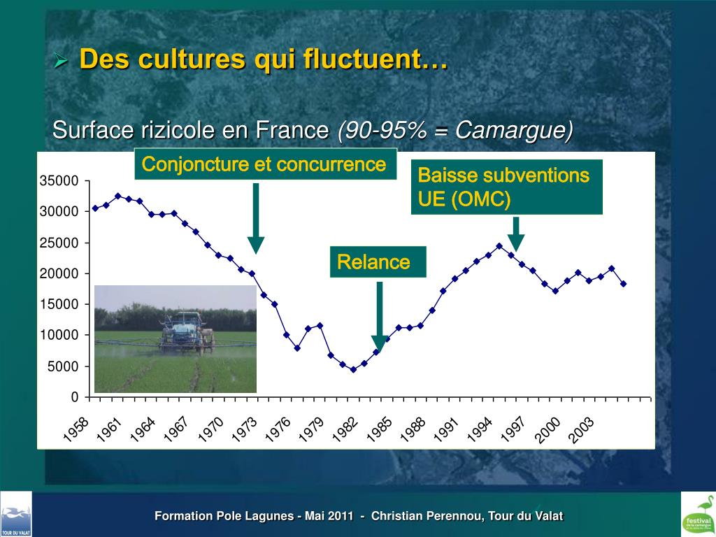 Conjoncture et concurrence
