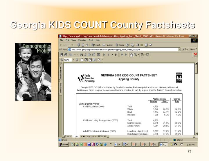 Georgia KIDS COUNT County Factsheets