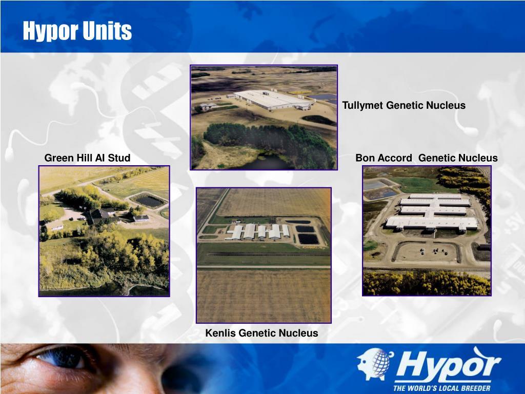 Hypor Units