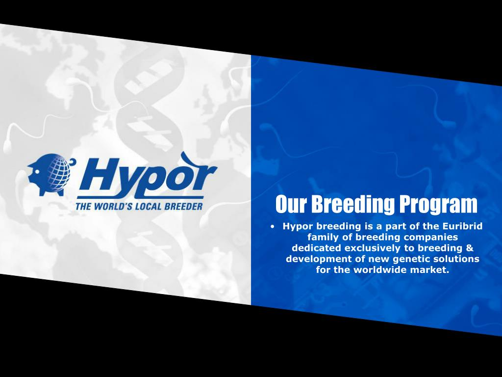 Our Breeding Program