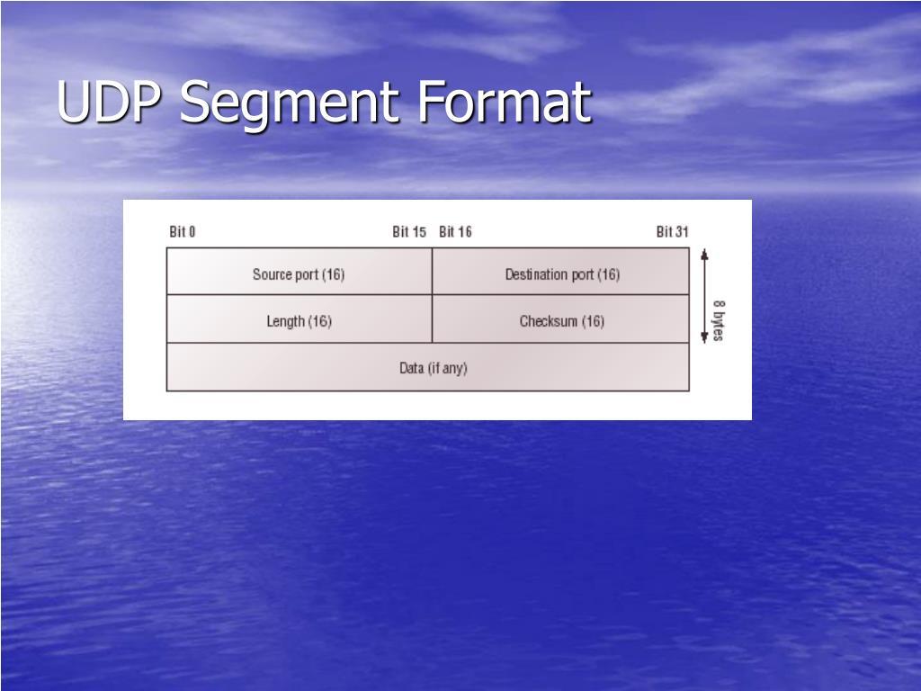UDP Segment Format
