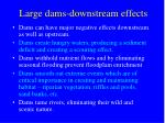 large dams downstream effects