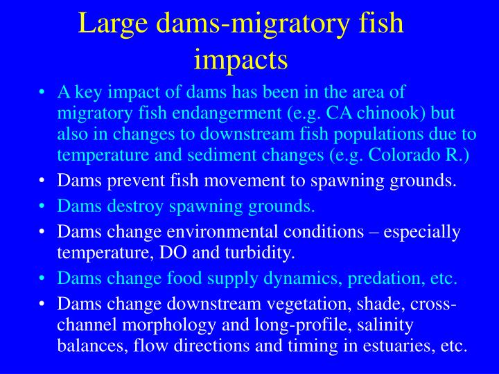 Large dams-migratory fish impacts
