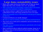large dams sustainability issues