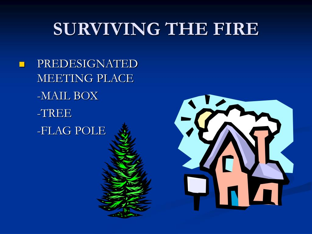SURVIVING THE FIRE
