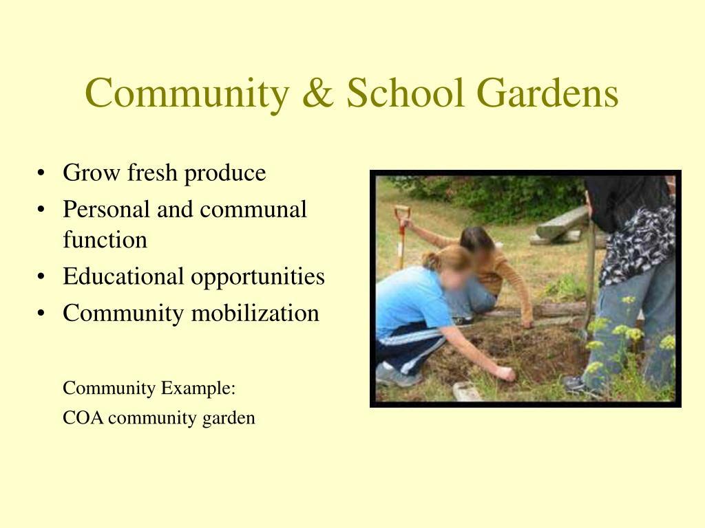 Community & School Gardens