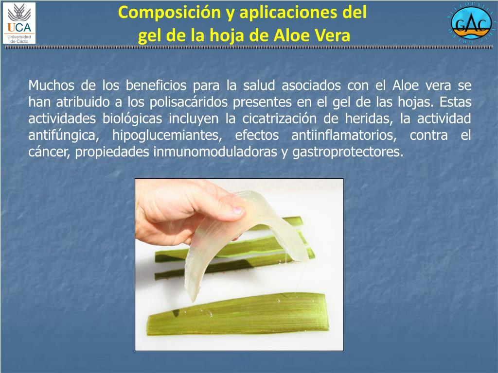 Composición y aplicaciones del