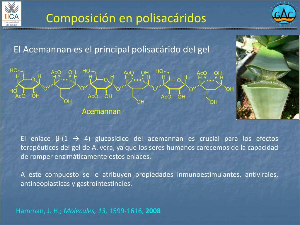 Composición en polisacáridos