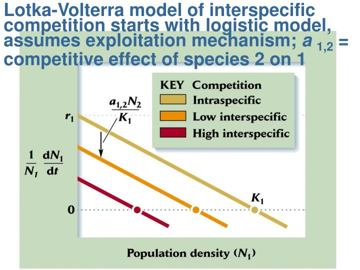 Lotka-Volterra model of interspecific competition starts with logistic model, assumes exploitation mechanism;