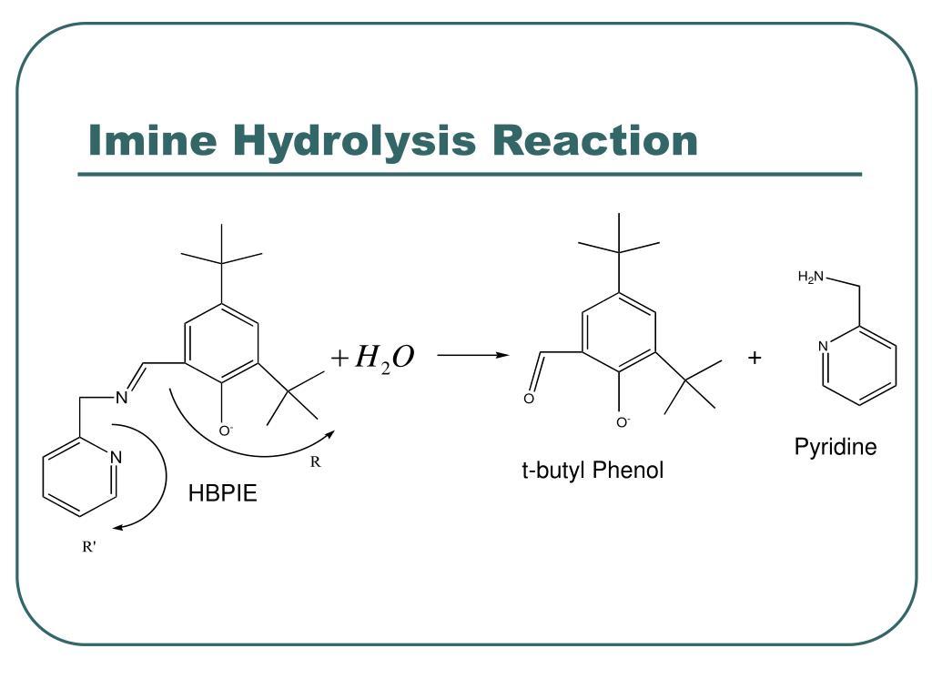Imine Hydrolysis Reaction