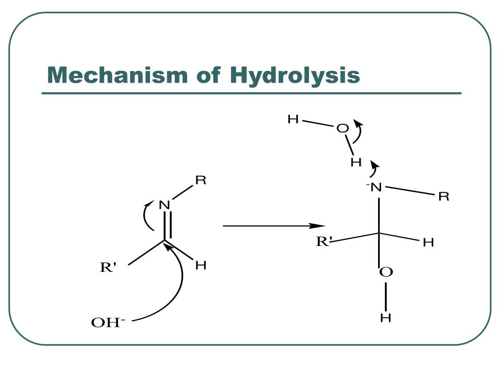 Mechanism of Hydrolysis