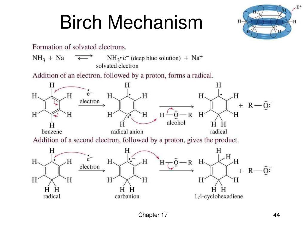 Birch Mechanism
