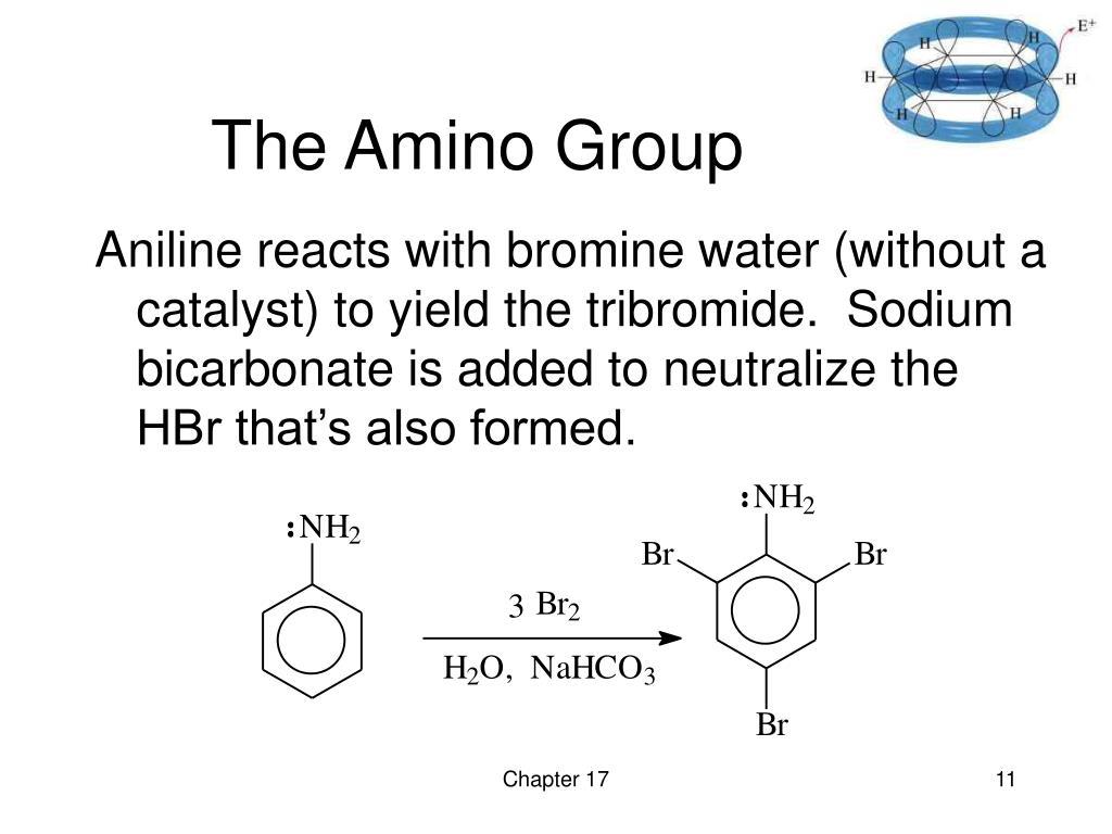 The Amino Group