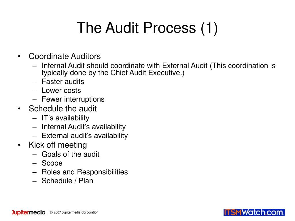 The Audit Process (1)