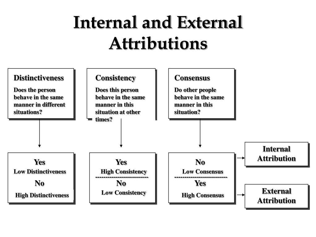 Internal and External Attributions