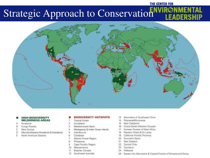Strategic Approach to Conservation