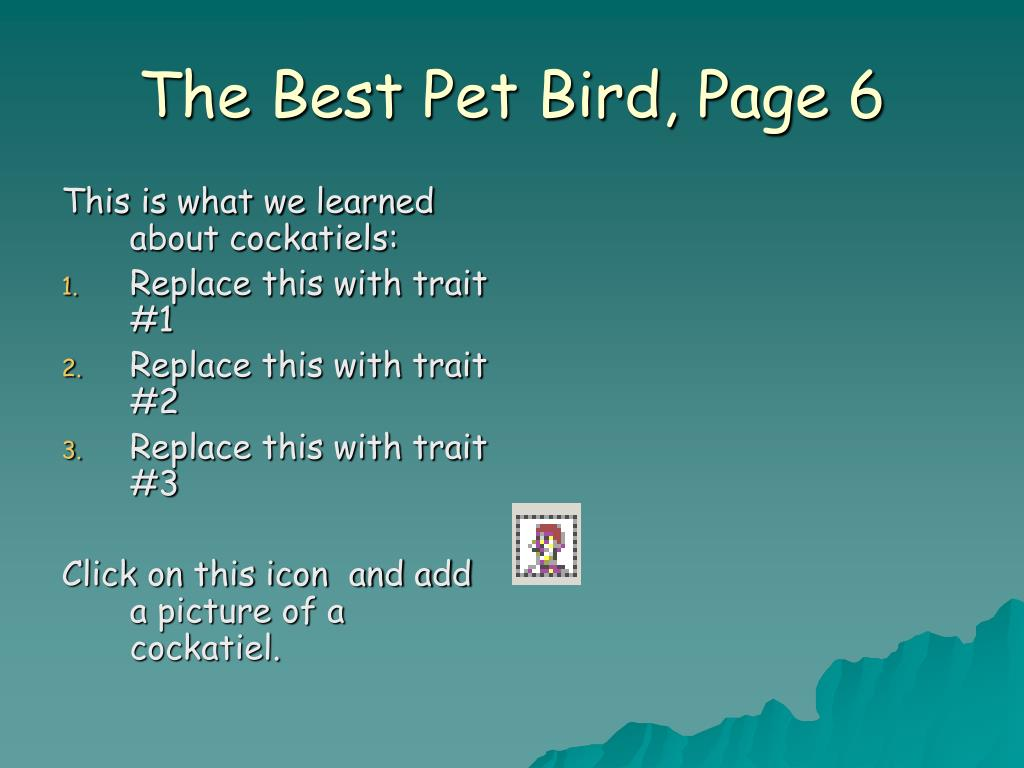 The Best Pet Bird, Page 6