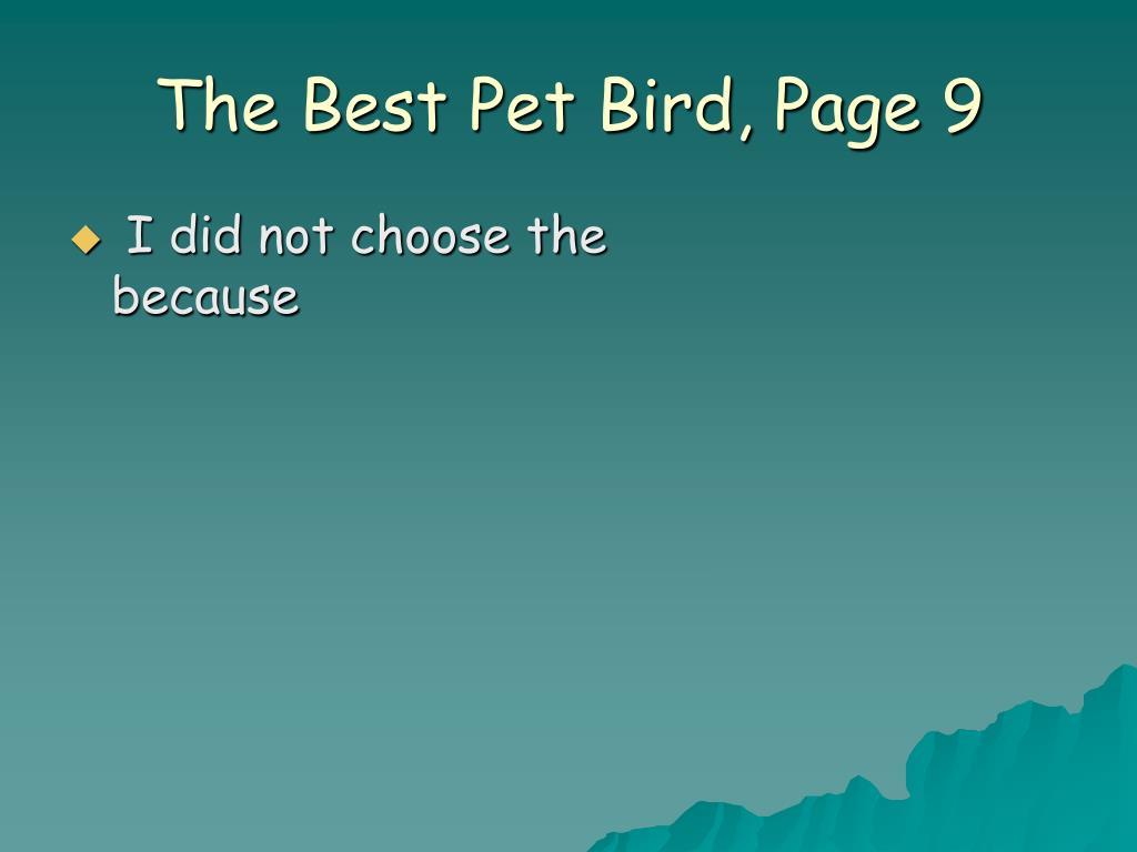 The Best Pet Bird, Page 9