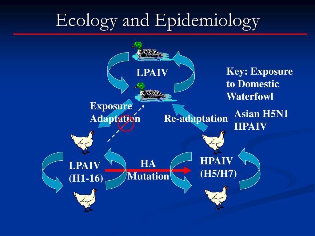 Ecology and Epidemiology