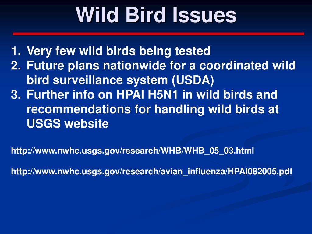 Wild Bird Issues