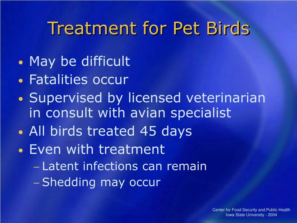 Treatment for Pet Birds