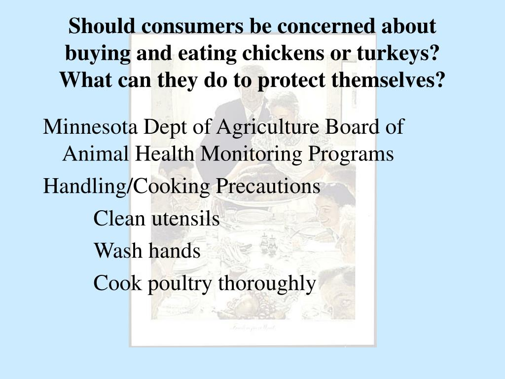 Should consumers be concerned about buying and eating chickens or turkeys? What can they do to protect themselves?
