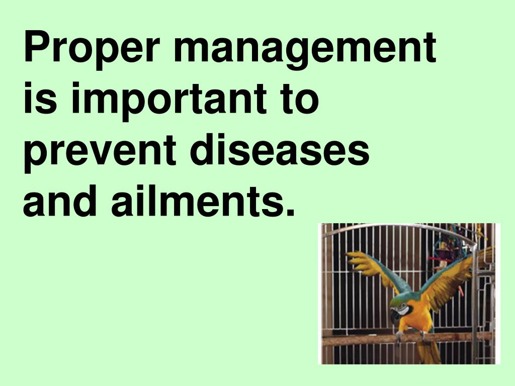 Proper management is important to prevent diseases and ailments.