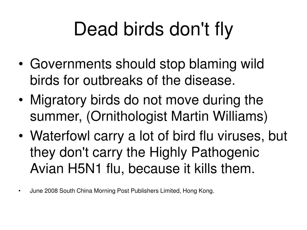 Dead birds don't fly