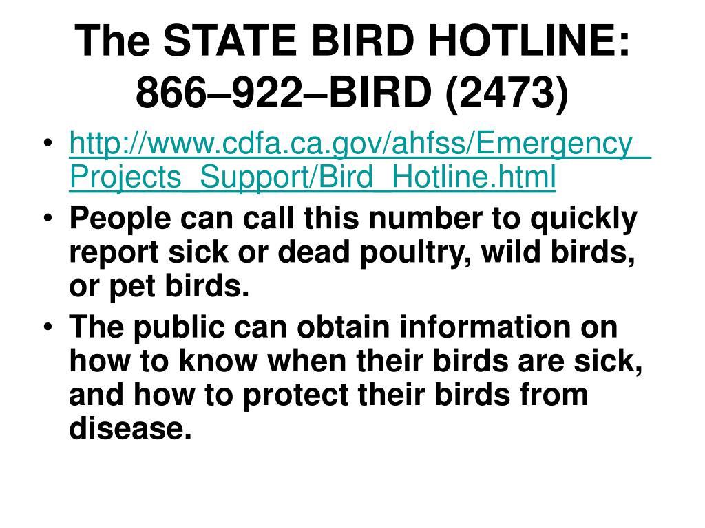 The STATE BIRD HOTLINE: 866–922–BIRD (2473)
