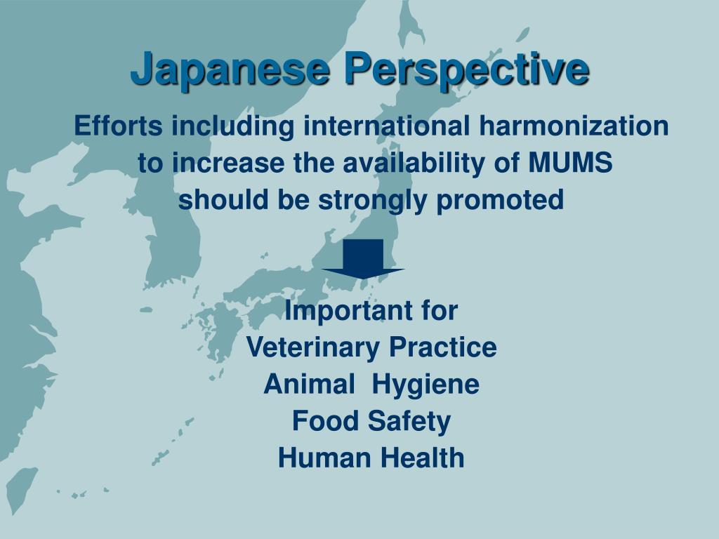 Japanese Perspective