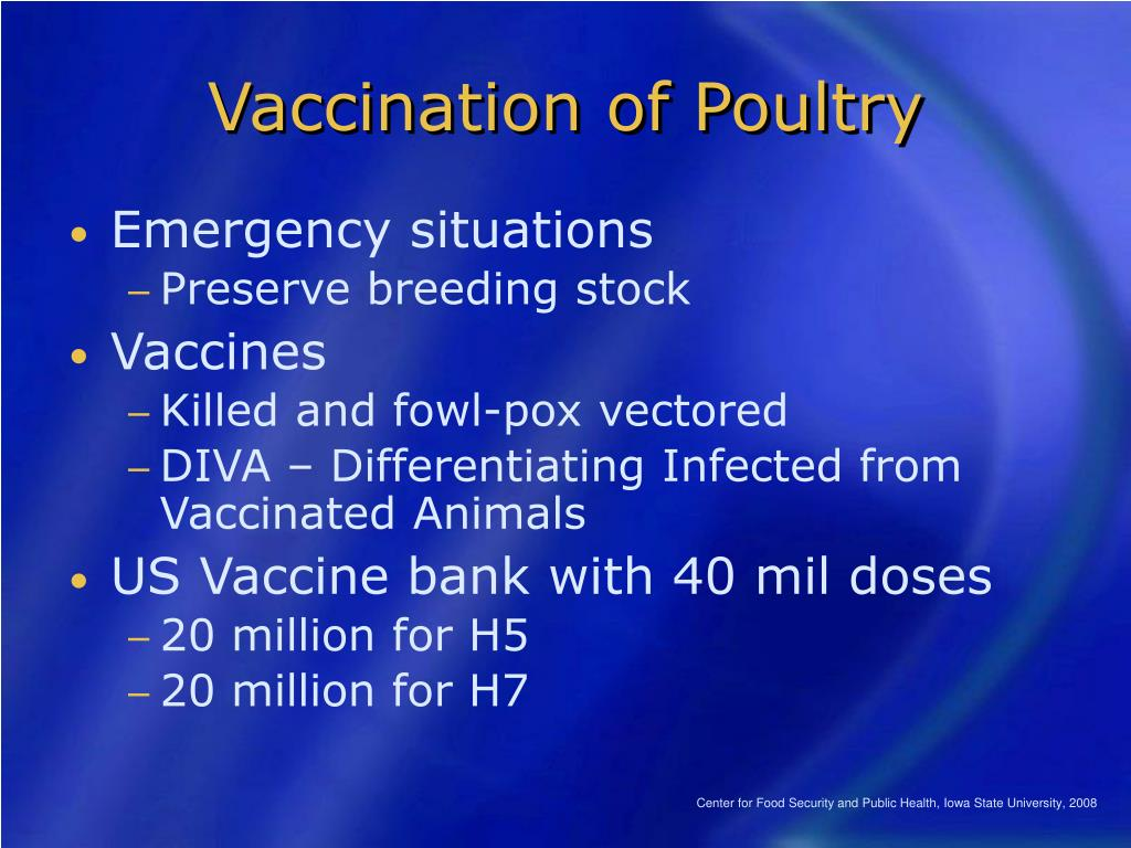 Vaccination of Poultry