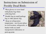 instructions on submission of freshly dead birds
