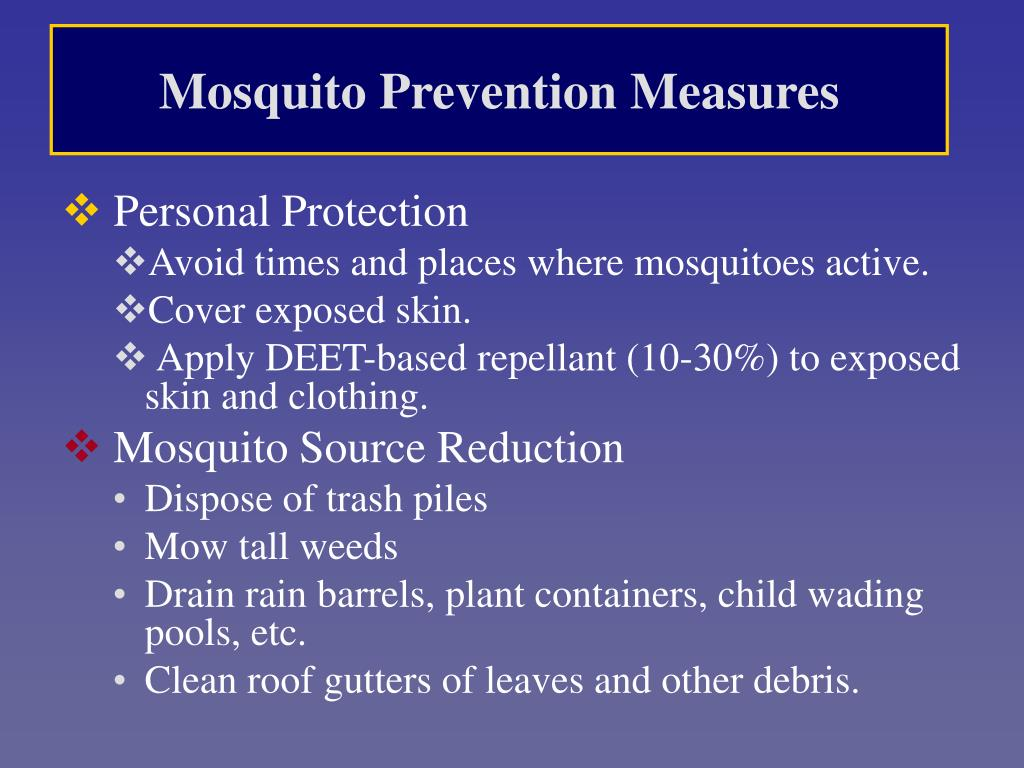 Mosquito Prevention Measures