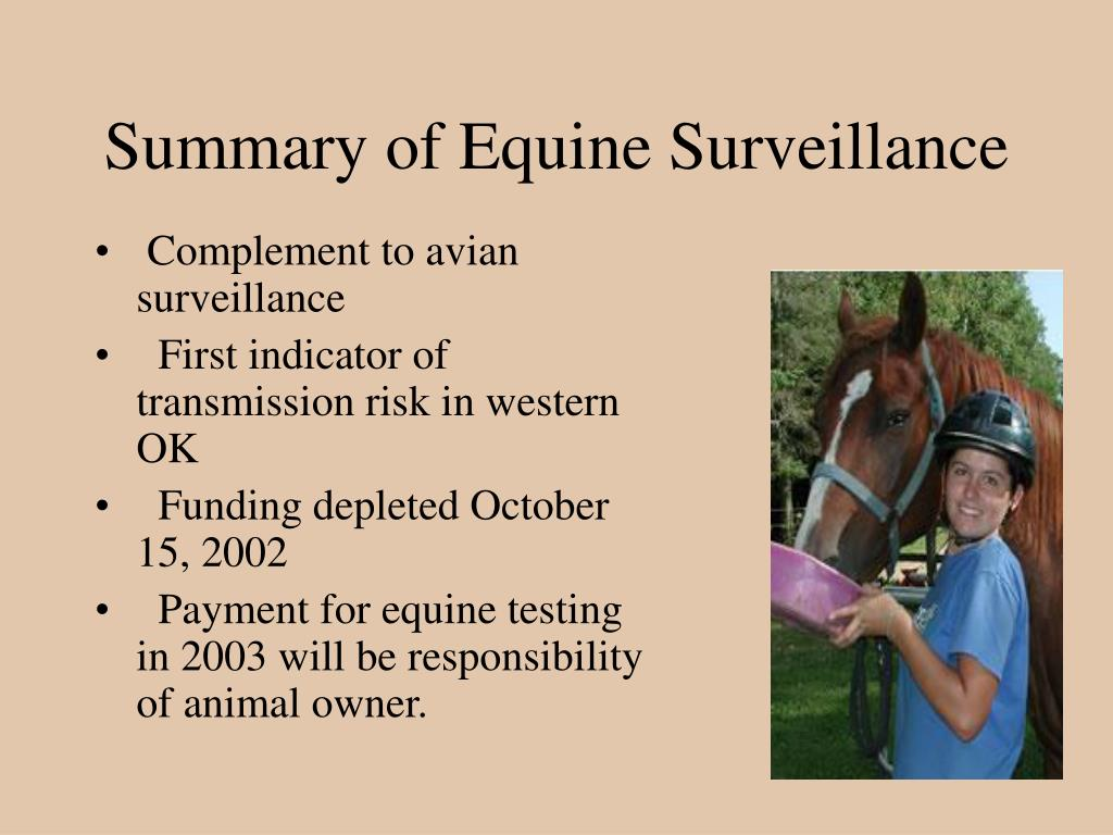 Summary of Equine Surveillance
