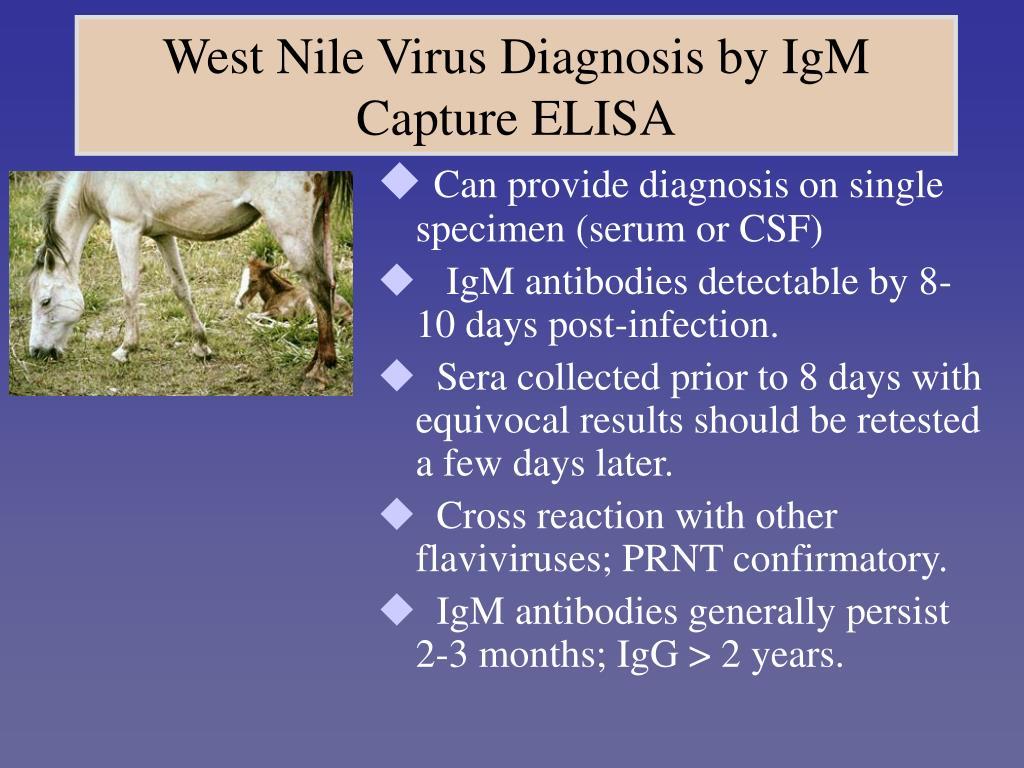 West Nile Virus Diagnosis by IgM Capture ELISA
