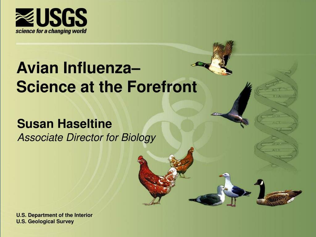 Avian Influenza–