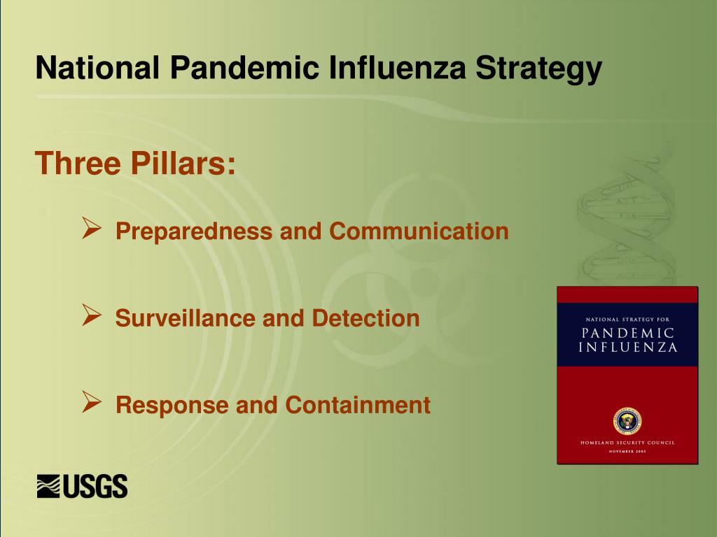 National Pandemic Influenza Strategy