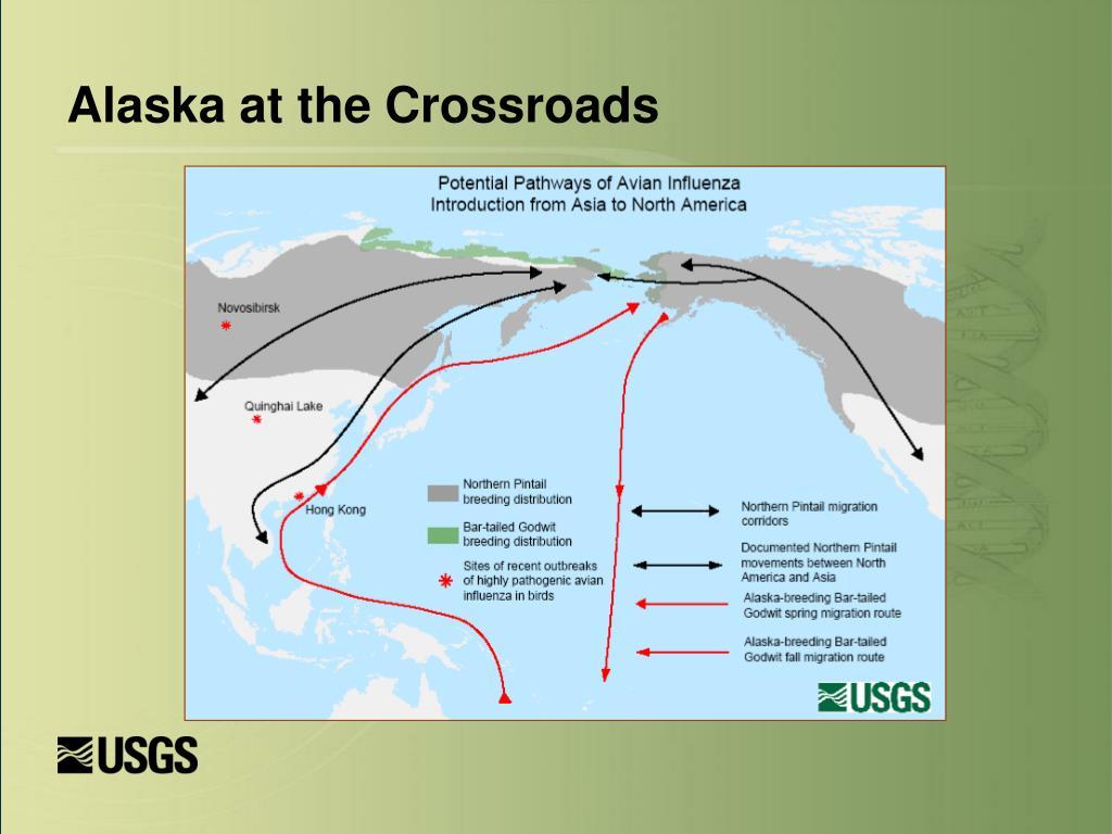 Alaska at the Crossroads