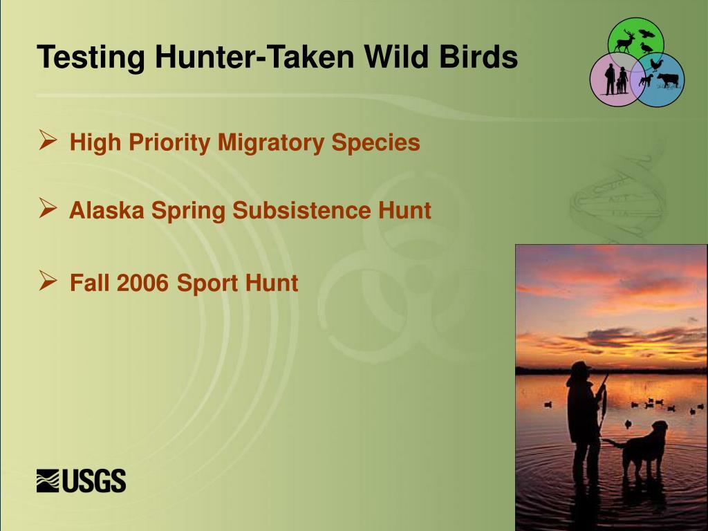 Testing Hunter-Taken Wild Birds