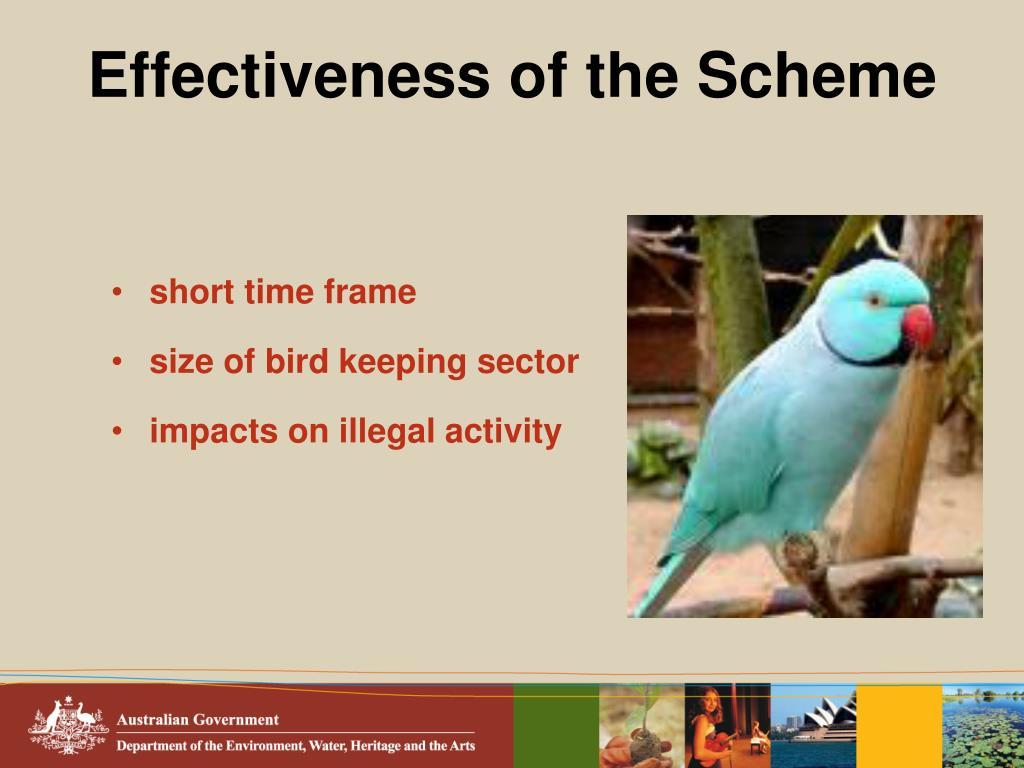 Effectiveness of the Scheme