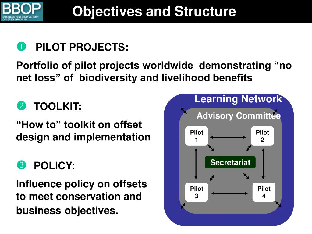 Objectives and Structure
