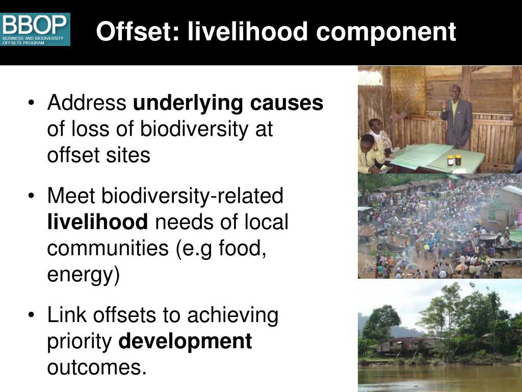 Offset: livelihood component